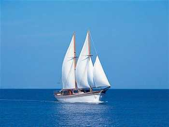 Yacht HERMINA - 18