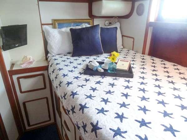 Yacht STARGAZER - 9