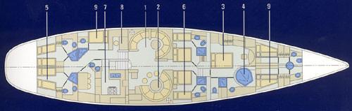 AMADEUS's layout