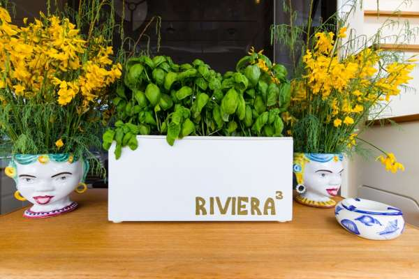 RIVIERA Decor detail