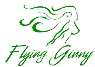 FLYING GINNY VII Logo