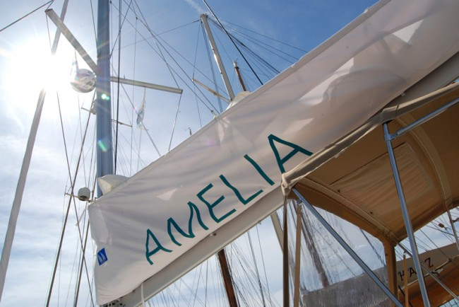 AMELIA Crew Photo