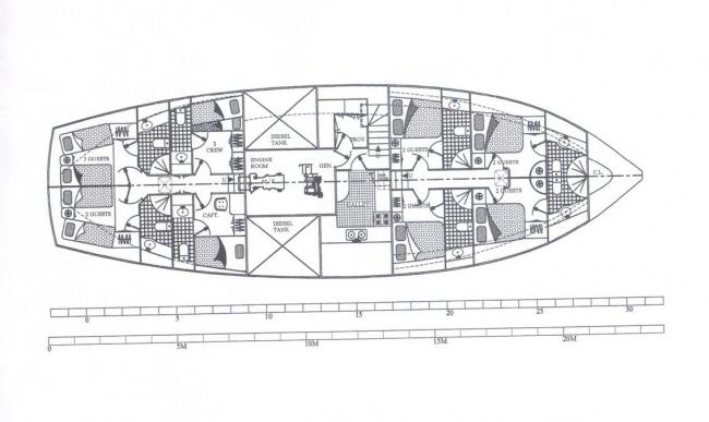MYRA's layout