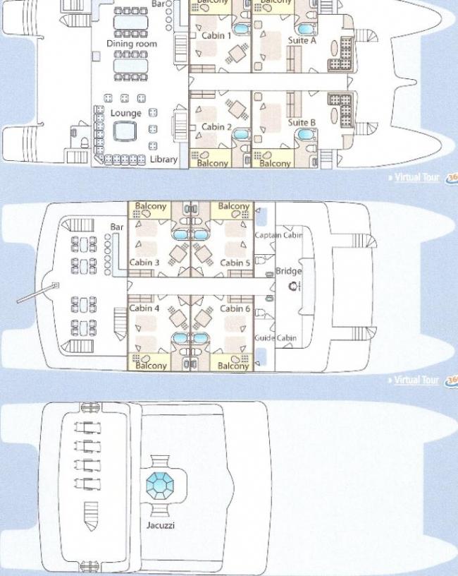 CORMORANT's layout