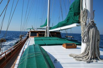 Yacht DERIYA DENIZ - 12