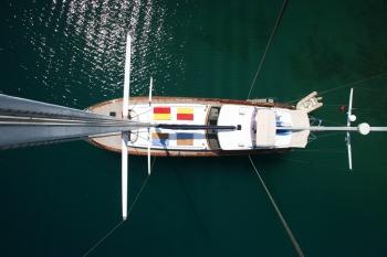 Yacht EUPHORIA - 11