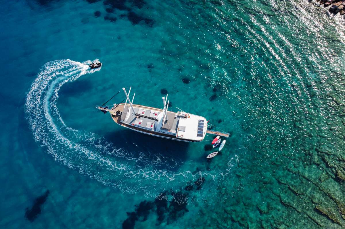 Imbarcazione PALMYRA
