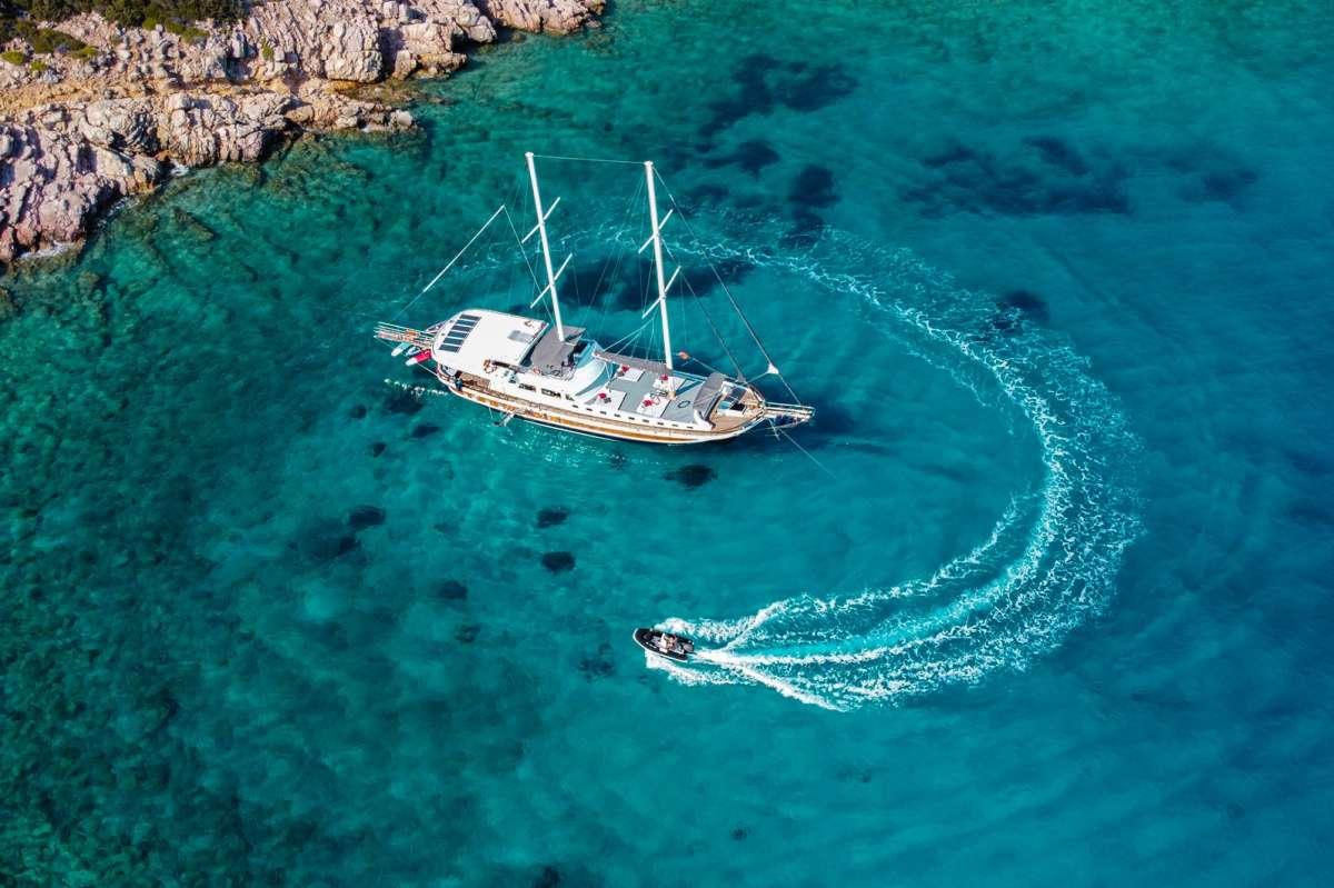 Yacht PALMYRA - 10