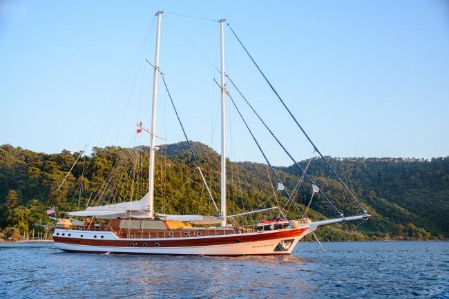 Imbarcazione WICKED FELINA