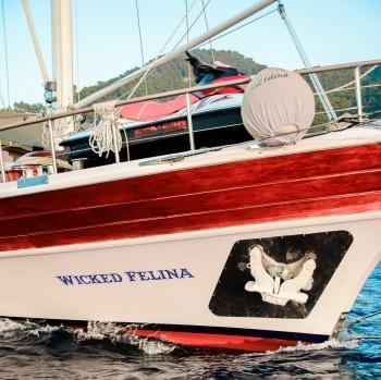 Yacht WICKED FELINA - 11