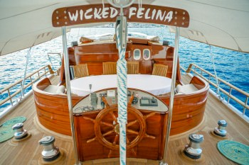 Yacht WICKED FELINA - 13
