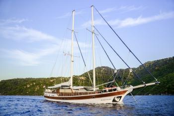 Yacht WICKED FELINA - 17