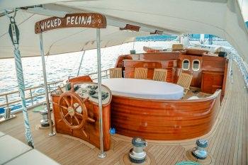 Yacht WICKED FELINA 3
