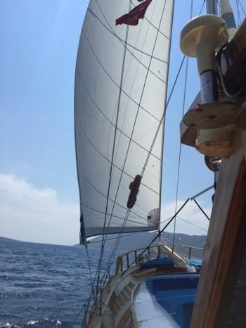 Yacht AMRA - 11