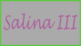 SALINA III's Logo
