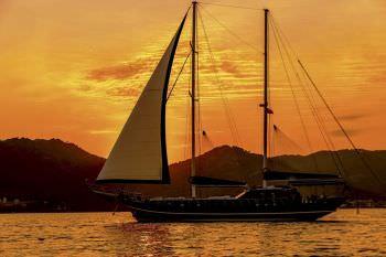 Yacht MICHELE - 12