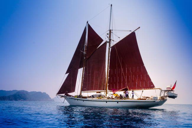 Yacht DALLINGHOO