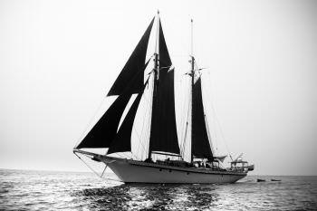 Yacht DALLINGHOO - 12