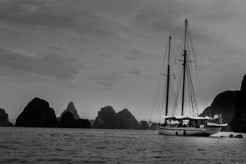 Yacht DALLINGHOO - 13
