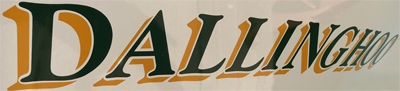DALLINGHOO's Logo