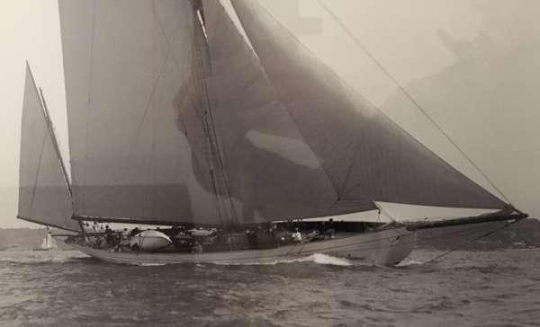 Yacht BLACK SWAN 2