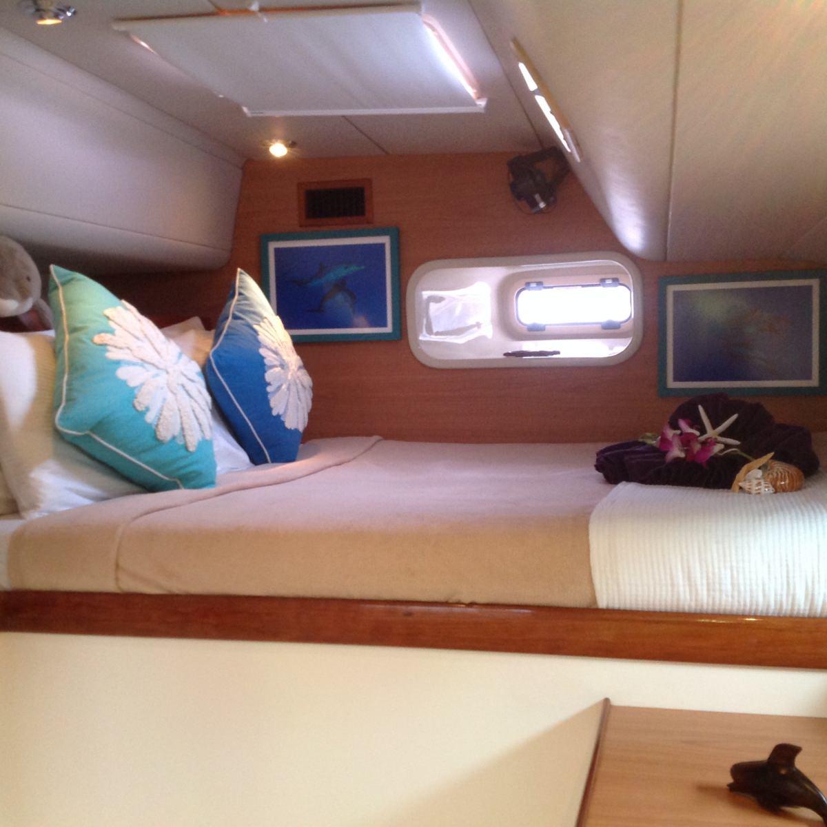 Dolphin Cabin