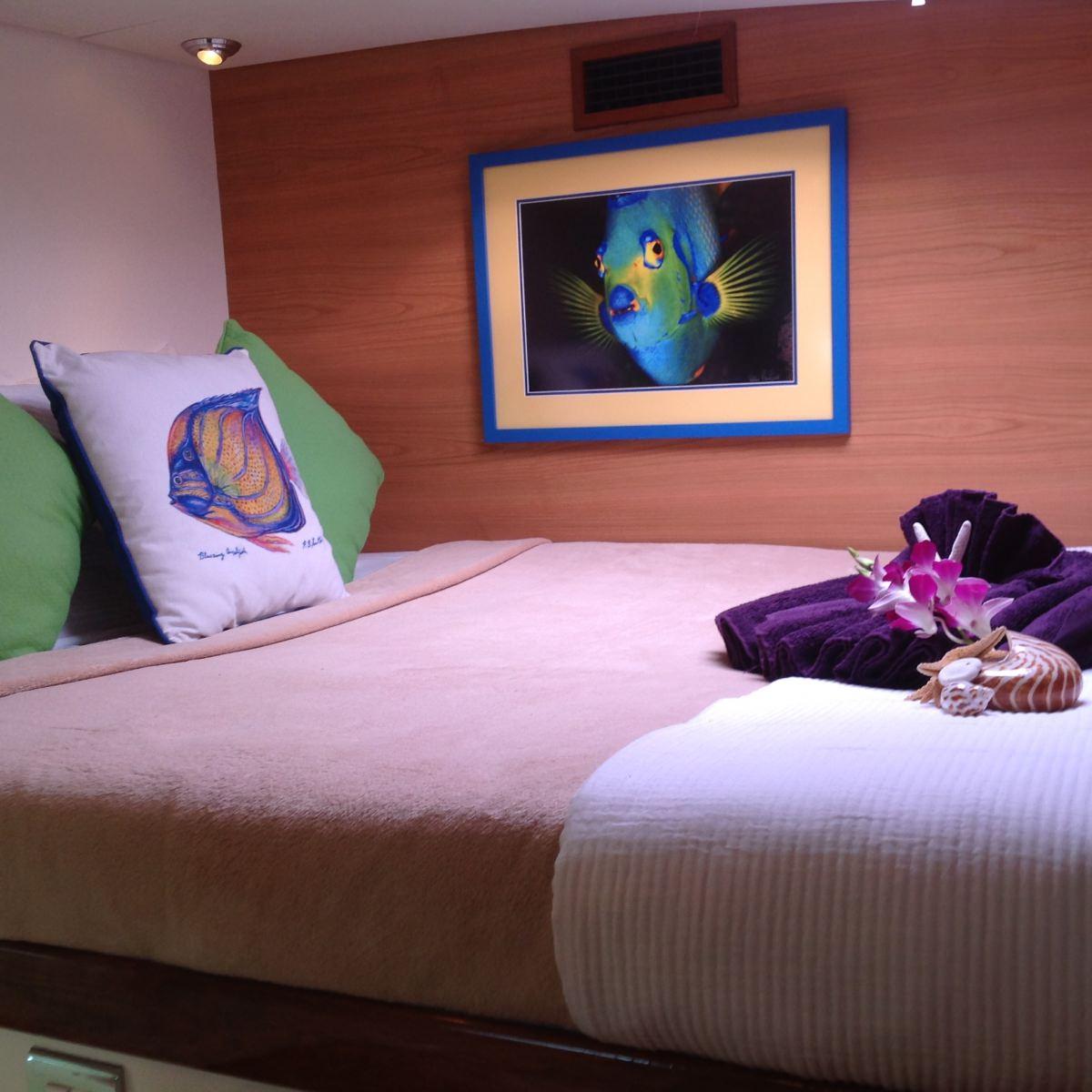 Angel Fish Cabin