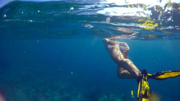Snorkeling in the anchorage