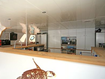 Galley with Bar Area covered by a Hard Bimini