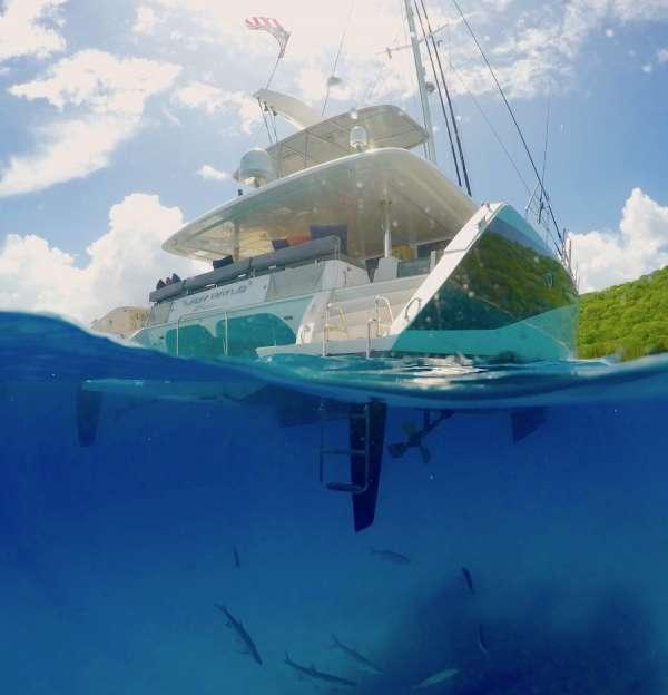 The teaming seas under Lady katlo