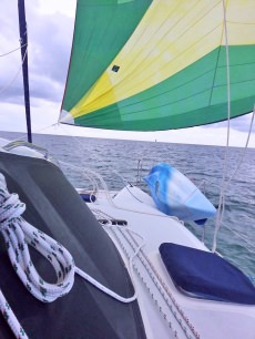 Yacht Freebird customer review image