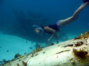 snorkel a sunken plane!
