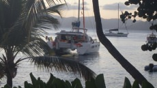 Yacht Starfish customer review image