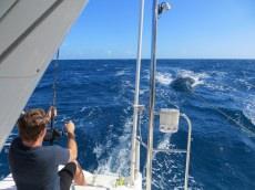 Yacht Braveheart customer review image