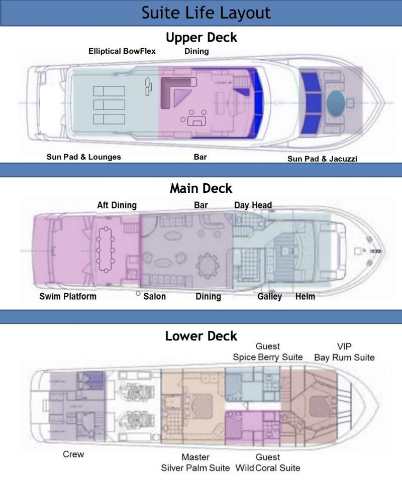 SUITE LIFE  Layout