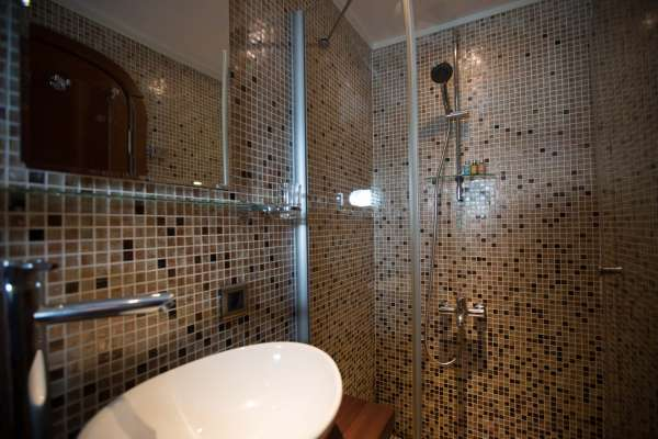 Master shower and toilet