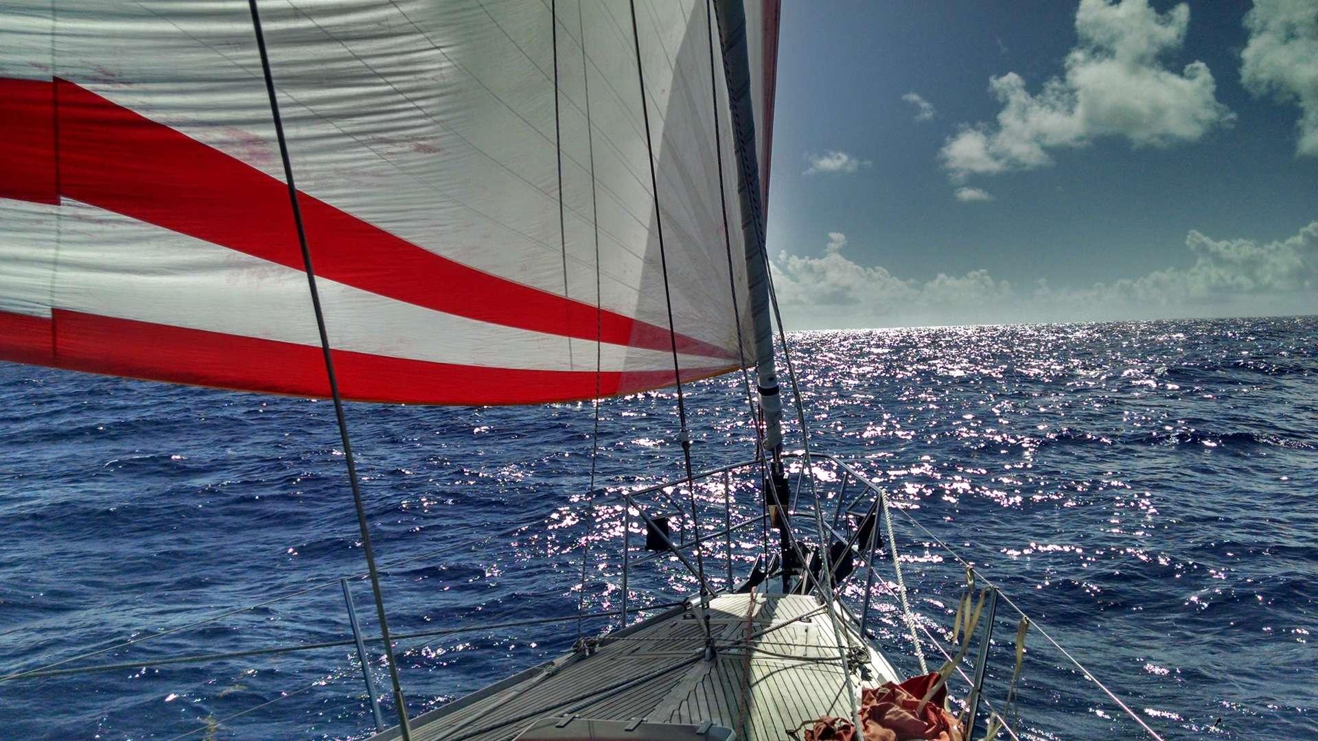 Spinaker Sailing