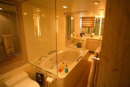 Master Bath/ jacuzzi tub