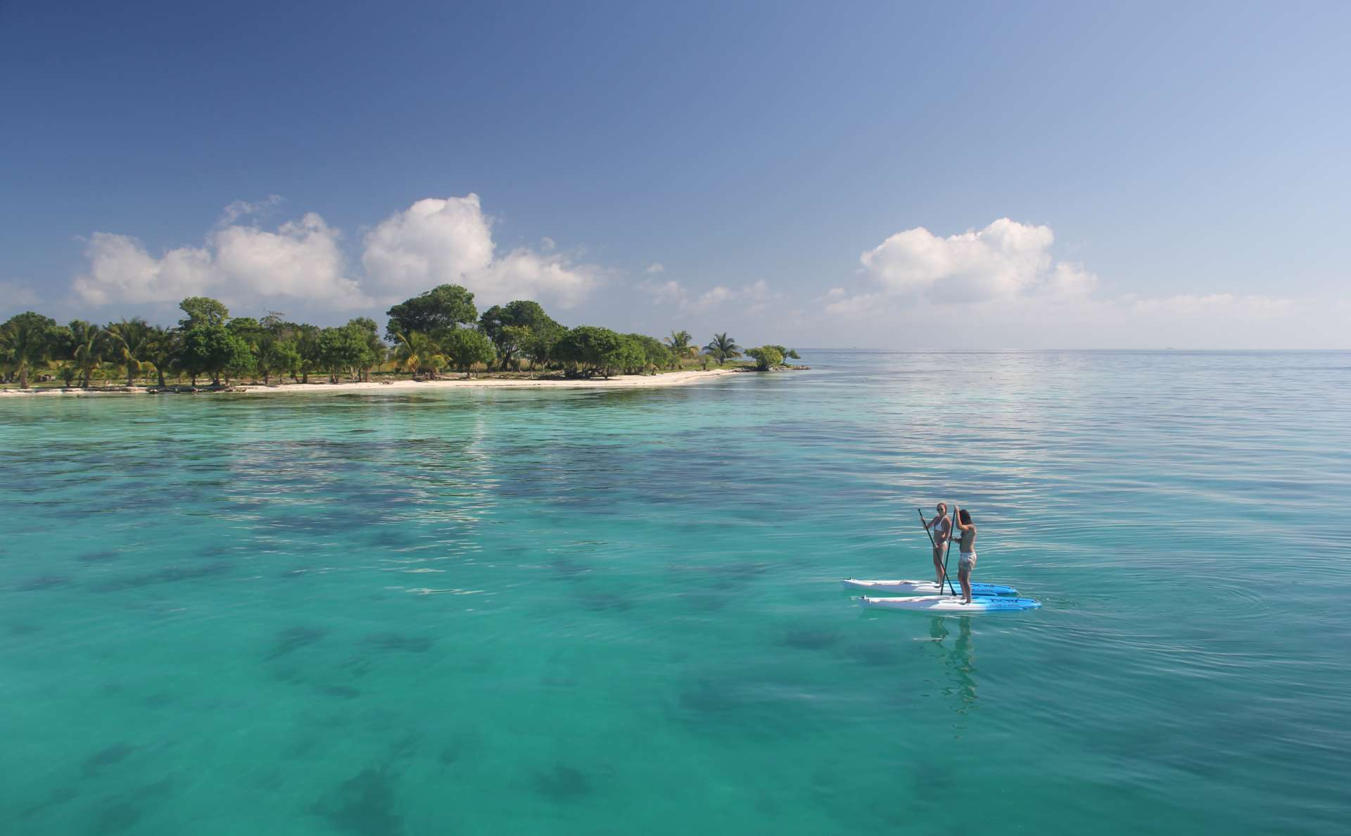 Paddleboarding at Moho Caye