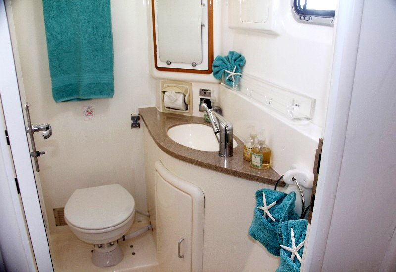 Spacious guest bath w/electric toilet