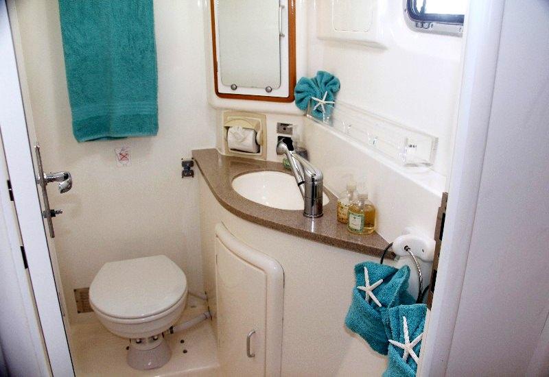 Spacious guest bath w/electric toilet