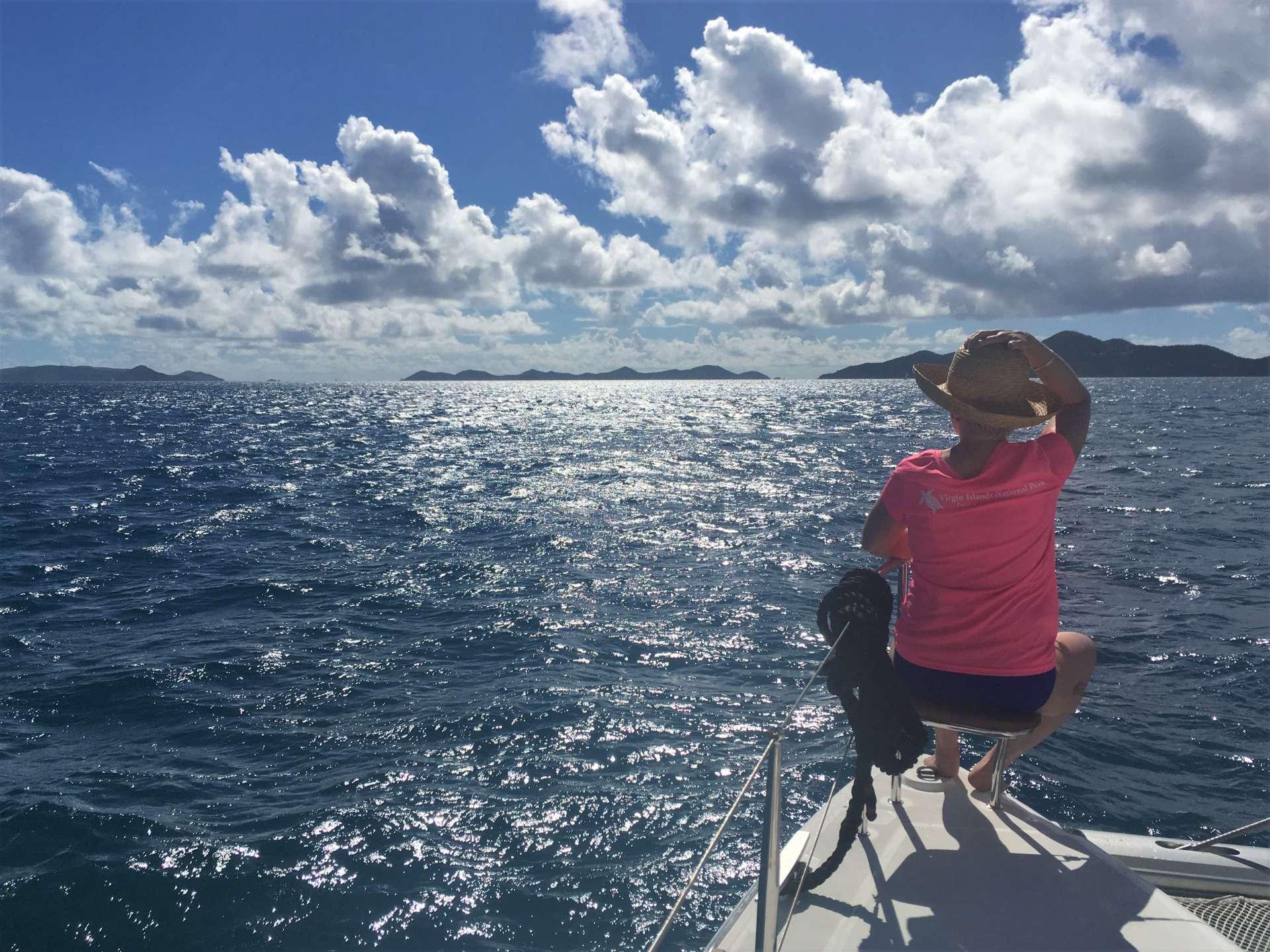 Enjoying the bow