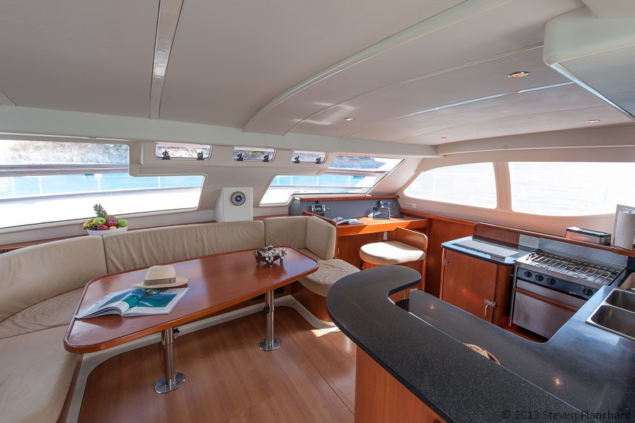 Spacious Salon and Galley