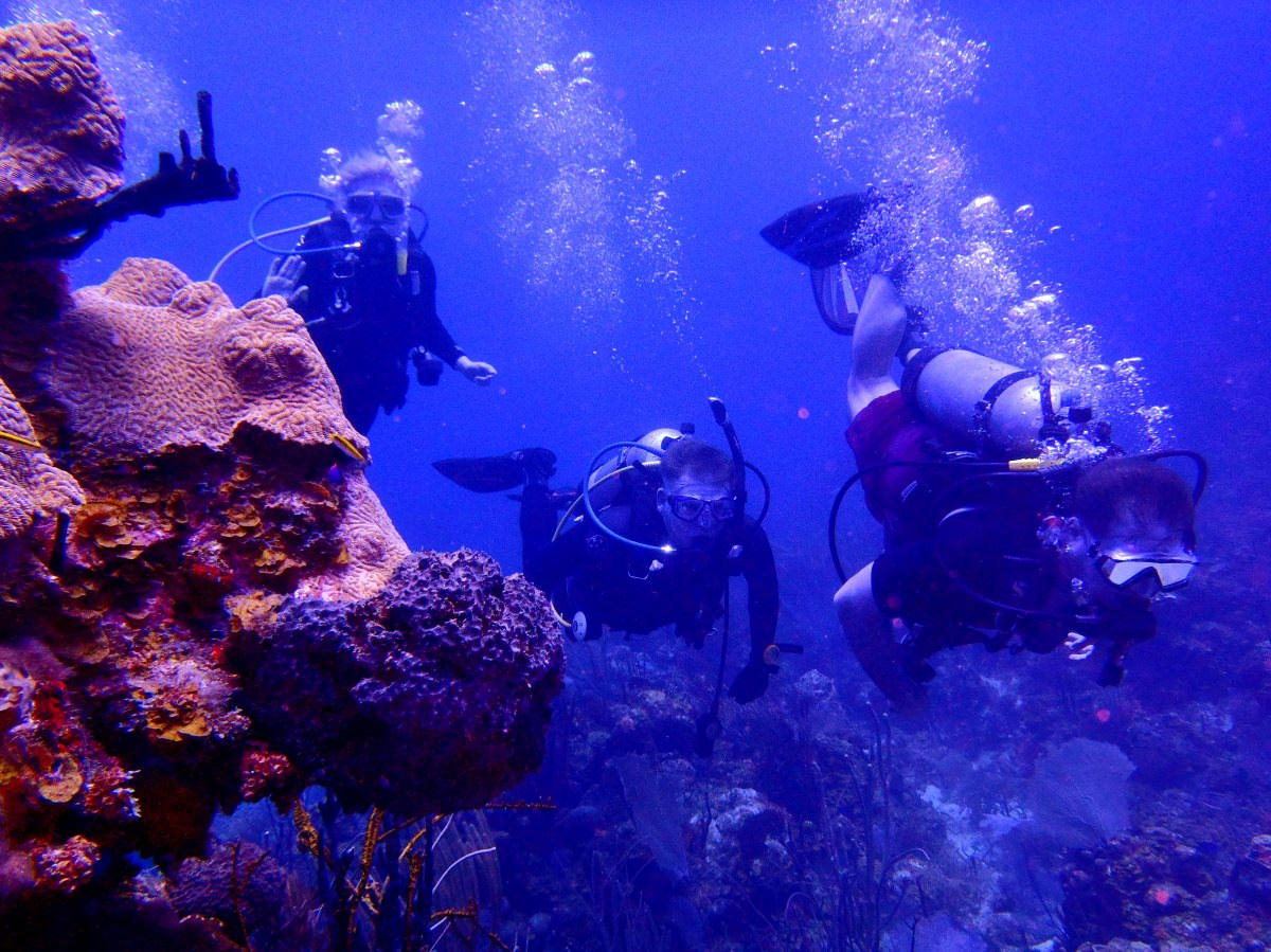 Diving the Reefs