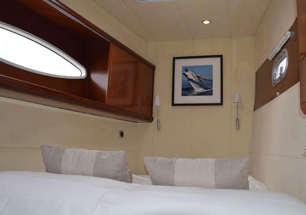 Catamaran Charter Whale