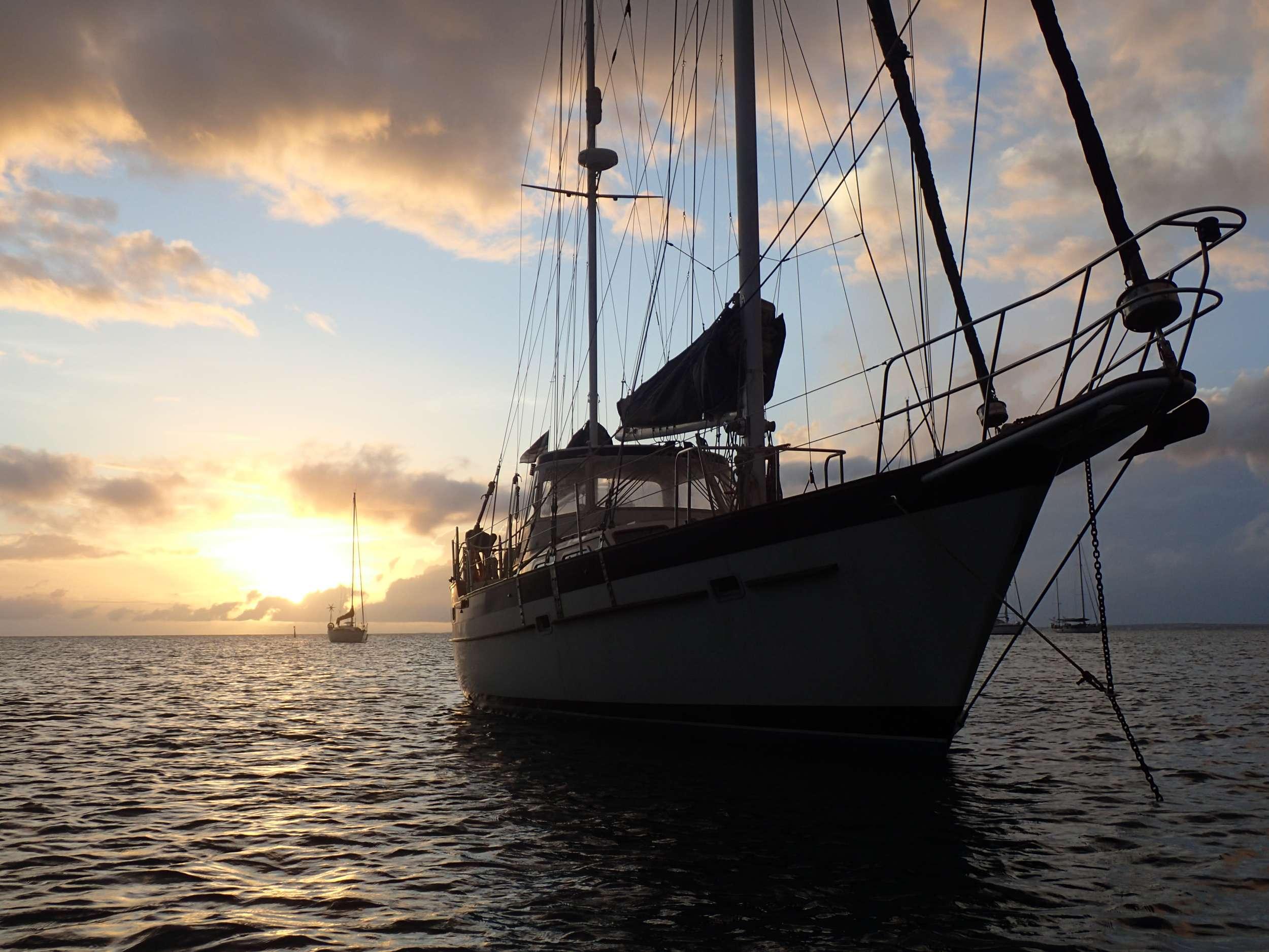 JALAPEÑO yacht image # 8