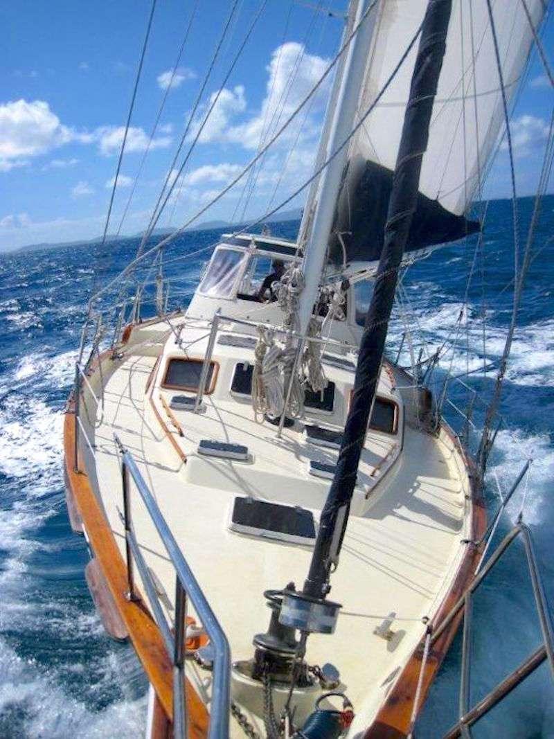 JALAPEÑO yacht image # 14