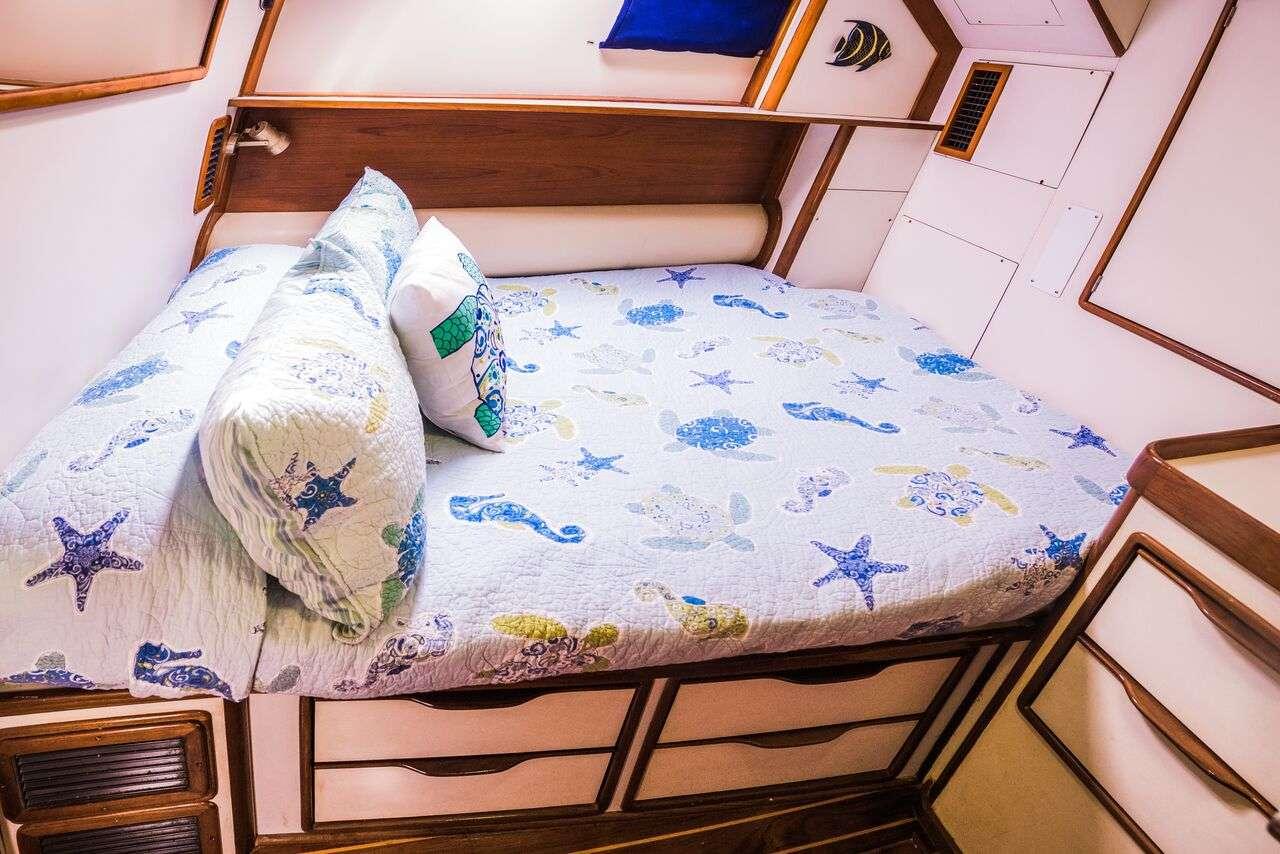 Guest Ensuite 2nd Cabin