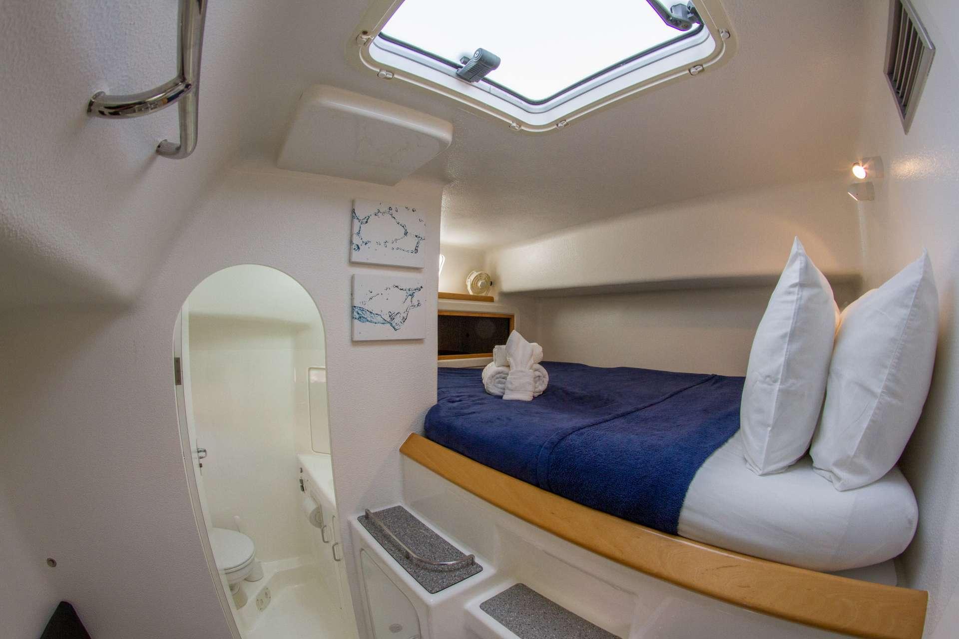 Catamaran Charter Voyage 500