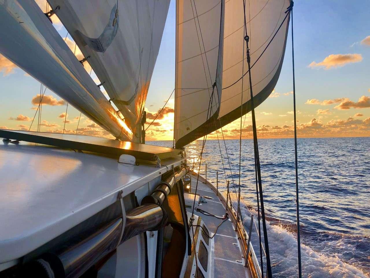 KAI yacht image # 16
